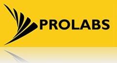 Prolab Soft Chennai Logo