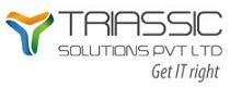 Triassic solutions pvt ltd